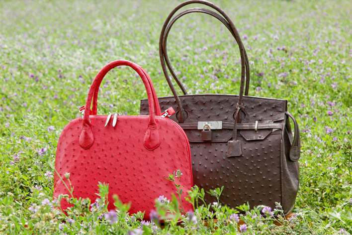 Safari Ostrich Farm Leather Handbag Oudtsn